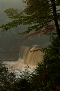 Photo of Tahquamenon Falls by Sandi Beaudoin