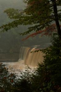 Photo of Tahquamenon Falls by Sandi Beaudoin